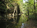White Pines Forest State Park Spring Creek5.JPG