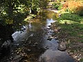 Whitetop Laurel Creek (Washington County, Virginia, USA) 3 (30355188351).jpg