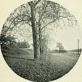Whittier-land; a handbook of North Essex (1904) (14781725724).jpg