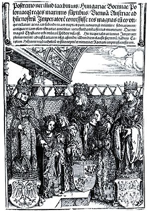First Congress of Vienna - Woodcut by Albrecht Dürer from the Triumphal Arch commemorating the double wedding at the First Congress of Vienna, on 22 July 1515.  Anna's betrothed Ferdinand I (age 11) is not shown. From left to right:  Maximilian I; Maximilian's granddaughter, Mary (age 9) marrying Vladislaus's son Louis (age 9); Vladislaus II; Vladislaus's daughter, Anna (age 12); and Vladislaus's brother, Sigismund I.