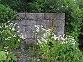 Wildflowers at Devenish - geograph.org.uk - 487542.jpg
