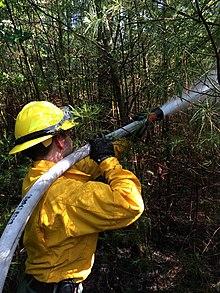 Wildfire - Wikipedia