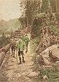 Wilhelm Gause Kaiser Franz Joseph auf der Jagd.jpg