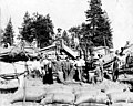 William Asplund's threshing crew and machinery, Idaho, 1904 (INDOCC 189).jpg