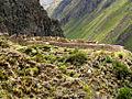 Willkaraqay ruins.jpg