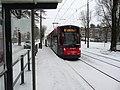 Winter halte Buitentuinen 2021 4.jpg