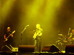 Wire in concert (Turin, 2008).jpg