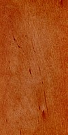 Wood Alnus glutinosa.jpg