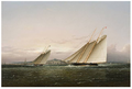 YachtRace BostonHarbor byButterworth.png