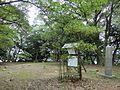 Yamaguchi Kounomine castle 01.JPG