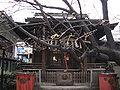 Yanagimori-jinja haiden.jpg