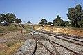 Yanco–Griffith railway line, looking away Leeton Railway Station (1).jpg