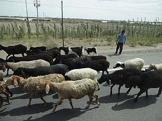China National Highway 315 - Image: Yarkand on G315 Highway, Xinjiang 1