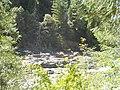 Yuba River 5.jpg