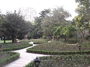 Zhongshan Park (Shanghai) - Rose beds in Zhongshan Park.