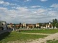 Zolkiew Wiczewa IMG 3905 46-227-0016.jpg