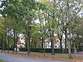 Zwartberg.jpg