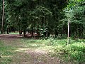 Čertův dub, vrchol a pomník.jpg