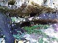 Грота в ущеле реки Таласу - panoramio.jpg