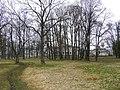 Парк возле усадьбы - panoramio.jpg
