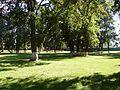 Парк - panoramio (238).jpg