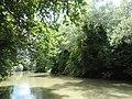 Река Тунджа, Балабана 3.jpg