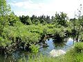 Речка Приваловка - panoramio.jpg