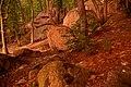 Скелі Сабарова освітлені призахідним сонцем P1130548.jpg
