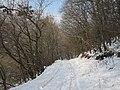 Արզականի և Մեղրաձորի արգելավայր-216.jpg