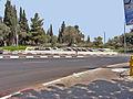 המילה ירושלים מפרחים (7017431685).jpg