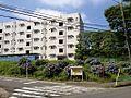 アジサイと平尾団地-2013 - panoramio.jpg