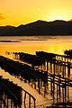 三津湾 Mitsu Bay - panoramio.jpg