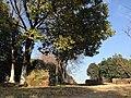 南京白马石刻公园 - panoramio.jpg