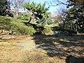 台場公園 - panoramio (12).jpg