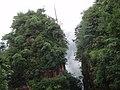 天生桥风光 - panoramio (1).jpg