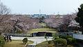 奈良原公園130317.jpg