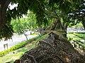 小西門與城牆殘蹟 - panoramio (2).jpg