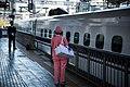 新幹線 (11068077494).jpg
