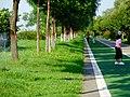 未央 渭河城市运动公园河堤路上的浇灌 03.jpg