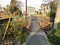 江戸川左岸、河原水門 - panoramio (6).jpg