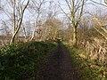 -2021-01-18 West along Weaver's Way footpath, East Ruston, Norfolk.jpg