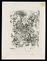 -Dandelion Seeds- MET DP106960.jpg