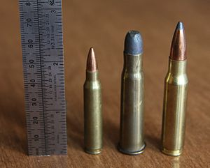 .33 Winchester - .33 Winchester Center Fire (center) with .223 Rem (left) and .308 Win (right).