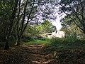 0034 Reserva de la Biosfera Terras do Miño.jpg