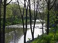 01 parque fluvial manzanares.jpg