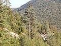 07580 Kemerköy-Kaş-Antalya, Turkey - panoramio.jpg