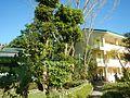 09514jfAlexis G. Santos National High School Liciada, Bustos Bulacanfvf 32.jpg