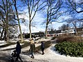 1083.Noorderplantsoen.Park.Ijs.Winter.Schaatsen.Sneeuw.Groningen.jpg