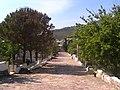 11. Sokak - panoramio.jpg