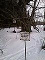 13001 Kalmistu.jpg